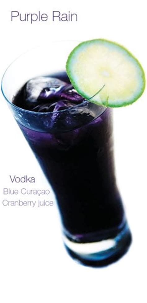 best 20 purple cocktails ideas on pinterest