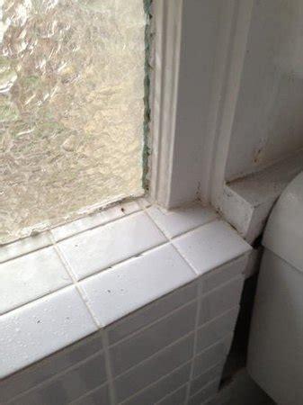d flies bathroom dirty kitchen bench tops picture of the last villa hobart tripadvisor