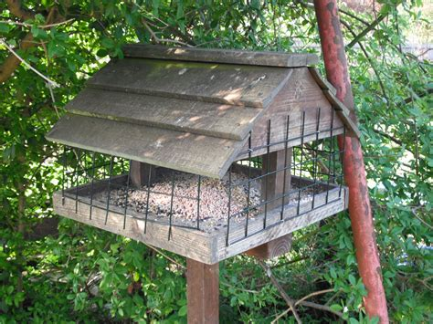 big bird proof feeders bird cages