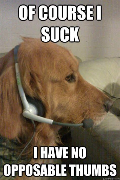 Call Of Duty Dog Meme