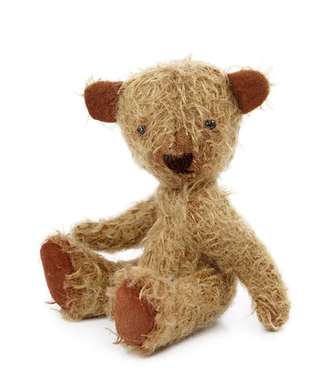 teddy the tired teddy shop or stylised shopping experience the exeter daily