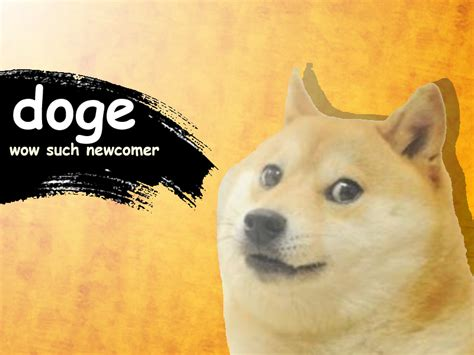 Know Your Meme Doge - much newcomer doge know your meme