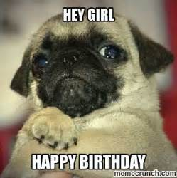 Happy Birthday Pug Meme - birthday pug