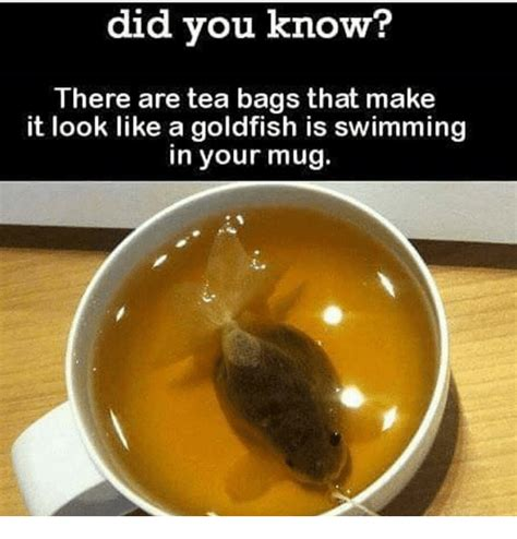 Tea Bag Meme - did you know there are tea bags that make it look like a