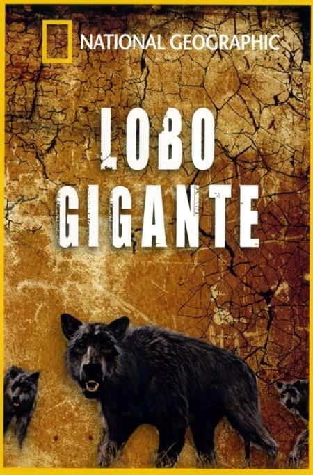 lobo gigante homo lupus lobo gigante