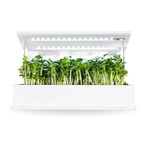 indoor garden kits     order