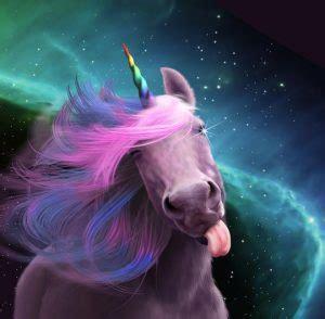 google images unicorn chaussons licorne pour passer des moments confortables et