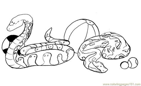 snake coloring page pdf coloring pages snake reptile gt snake free printable