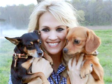 carrie underwood dogs carrie underwood takes dogs to work