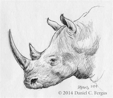 Big 5 Sketches by Rhino Sketches Search Rhino