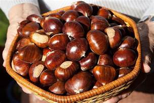 how to cook chestnuts tips to roast boil and grill