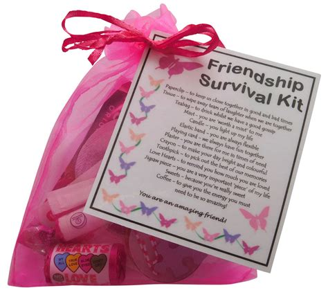 friendship bff best friend survival kit gift unique