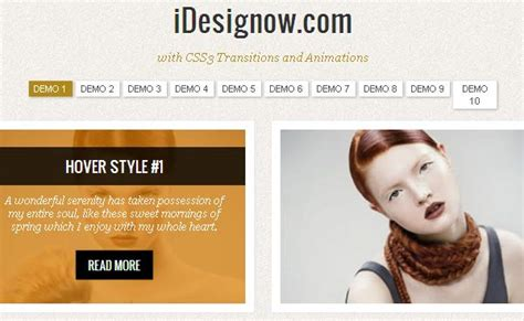 icon hover effects responsive jquery 10 image hover effect tutorials using jquery css html5