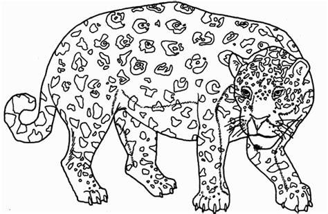 animales peligro extincion peru para colorear pintar animales en peligro de extincion imagui