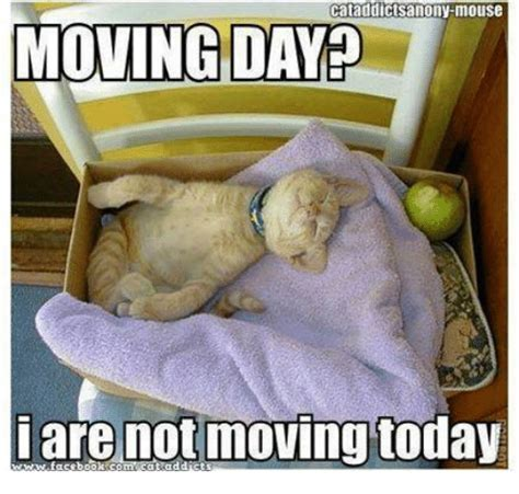 Moving Day Meme - 25 best memes about moving day moving day memes