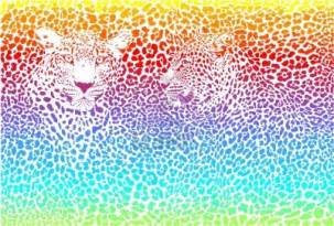 colorful cheetah print colorful cheetah wallpapers wallpapersafari