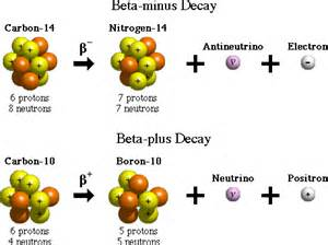 Difference Between Positron And Proton Glossary Term Beta Decay