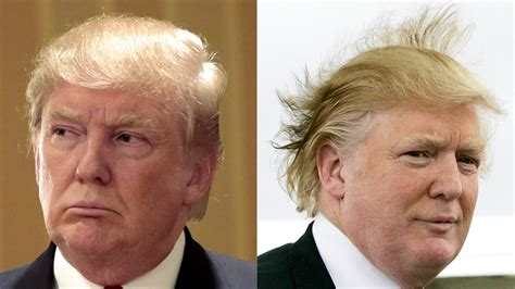 donald hair diagram donald s hair defended and explained in his own