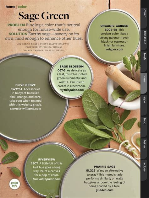 january moodboard sage green room for tuesday best 25 sage green walls ideas on pinterest living room