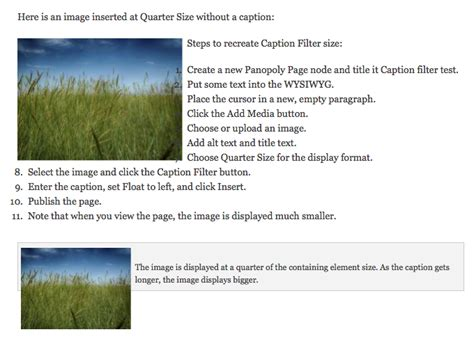 filter captions caption filter does not work with quarter size image format or with floated captions
