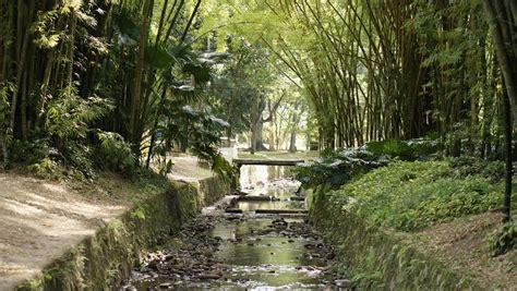 places  visit  rio de janeiro  botanical gardens