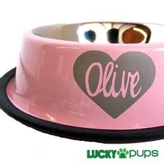 Lucky Baby Stainless Bowl 13x8cm 1000 images about luckypups products on