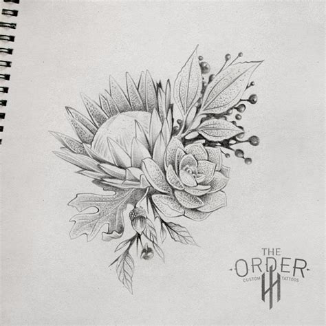 tattoo protea flower king protea drawing x3cb x3eking protea sketch x3c b x3e