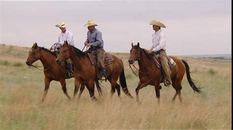 fotos de vaqueros a caballo image gallery jinetes vaqueros