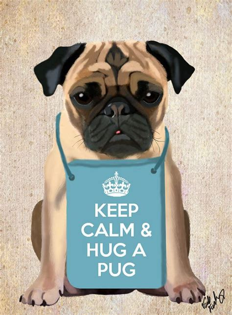 how pugs were made 177 best images about keep calm and on keep calm posters pop