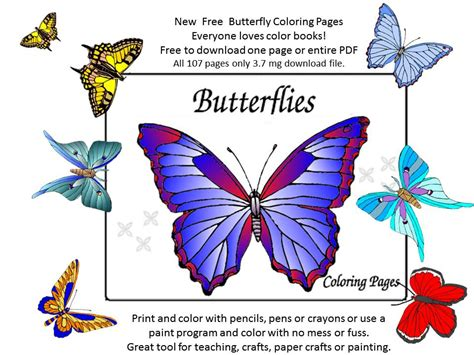 butterfly colors books 93 butterfly coloring book pdf animal alphabet