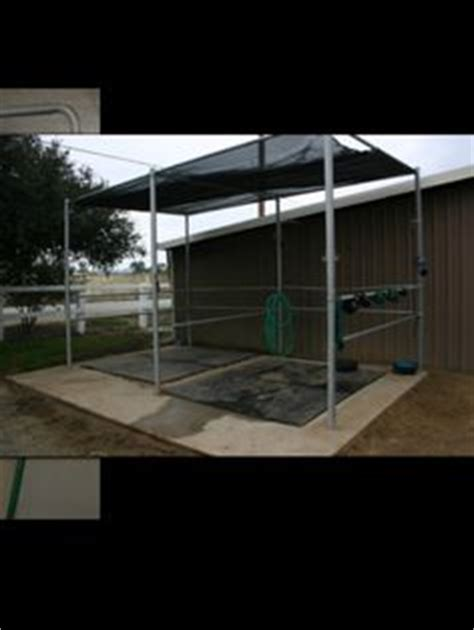 show cattle cool room designs sires inc