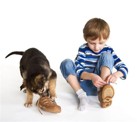 how to teach your kid to tie his shoes how to teach a child to tie shoelaces infacol