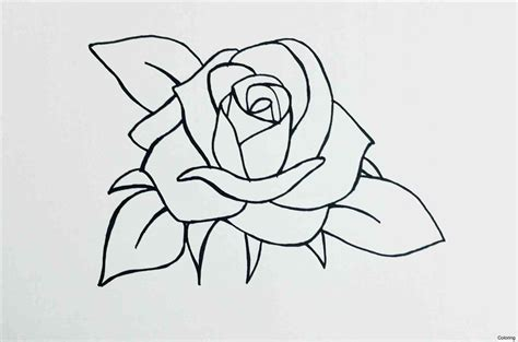 gallery youtube how to draw a rose drawings art gallery