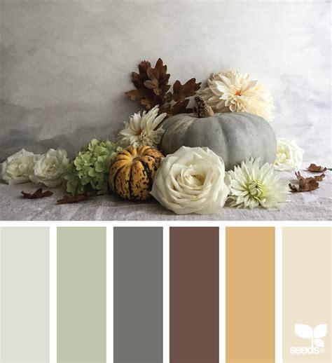 seeds color color thanks design seeds