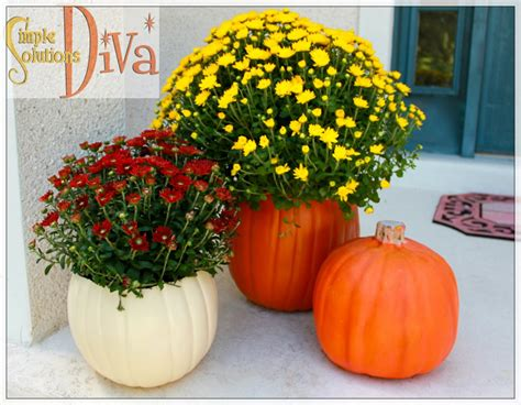 Pumpkin Planter by Simple Decor How To Up