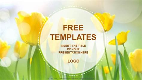 powerpoint template design free yellow tulips nature powerpoint templates free