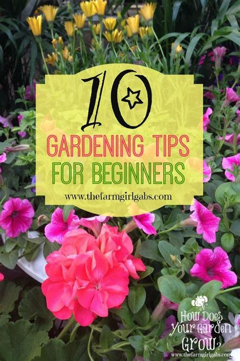 Gardening Flowers For Beginners The World S Catalog Of Ideas