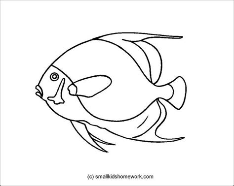 similiar tropical fish tattoo outlines keywords