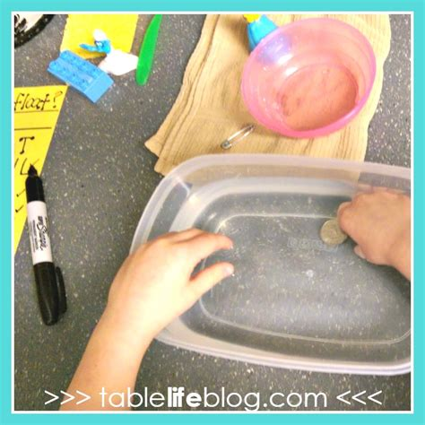 should float or sink sink or float a science experiment for learners