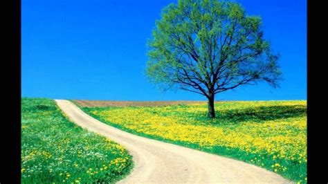 imagenes de paisajes tranquilos paisajes bonitos susto youtube