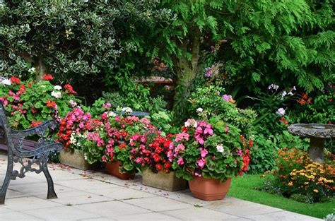 patio flower pots 35 patio potted plant and flower ideas creative and lovely photos