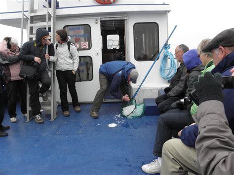 northland discovery boat tour st anthony newfoundland travel information