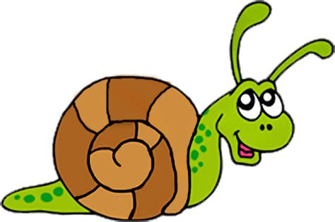 free clipart snail clip free clipart panda free clipart images
