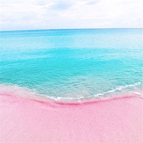 pink sand beach pink sand beach bahamas beautiful places pinterest
