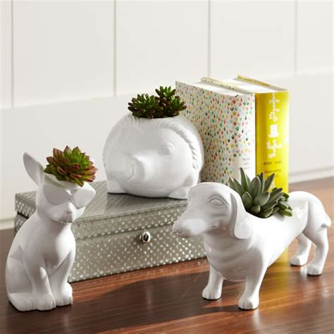 Novelty Planters by Novelty Planters Pbteen
