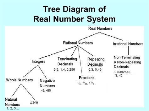 diagram of a real number system the mysterious world of number identity ppt