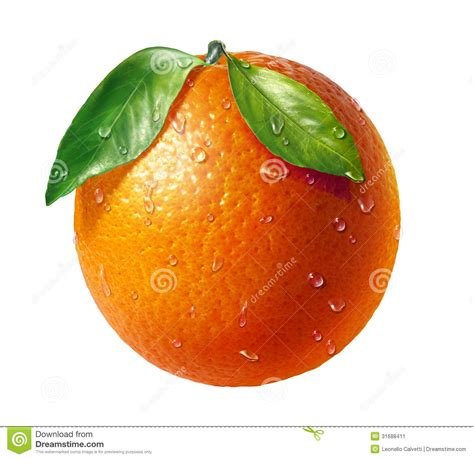 Orange Fresh Fruit With Two Leaves And Water Dropl Stock