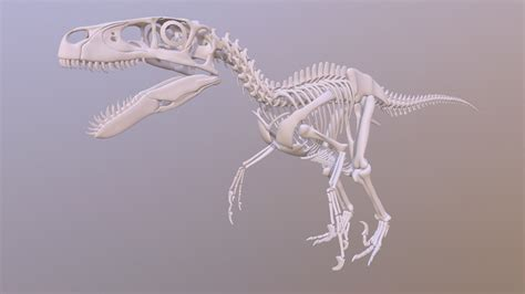 utahraptor skeleton    model  lordmithos
