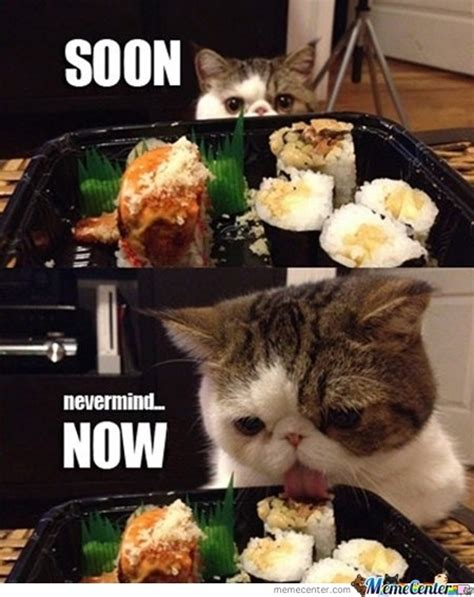 Sushi Meme - i can t wait for sushi by the crazy and insane meme center
