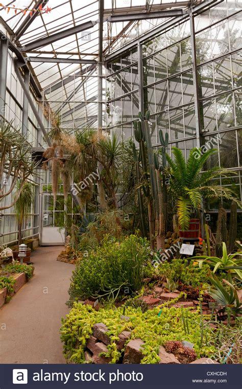 Amsterdam Botanical Garden Amsterdam Hortus Botanicus Botanical Garden Inside Greenhouses Stock Photo Royalty Free
